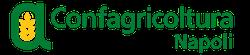 1501081542500_logo_napoli_top